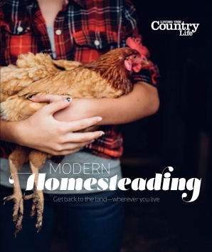 MODERN HOMESTEADING Paperback  by LIVING THE COUNTRY LIFE,